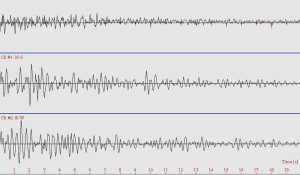 Il corso di laurea per diventare ingegnere sismico a Potenza.