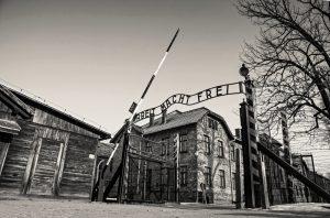 film sul nazismo